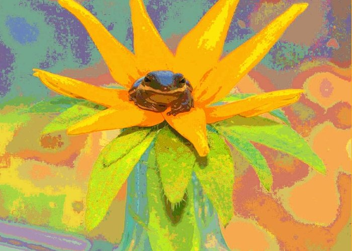 Frog Greeting Card featuring the photograph Frog A Lilly 2 - Photos Bydebbiemay by Debbie May