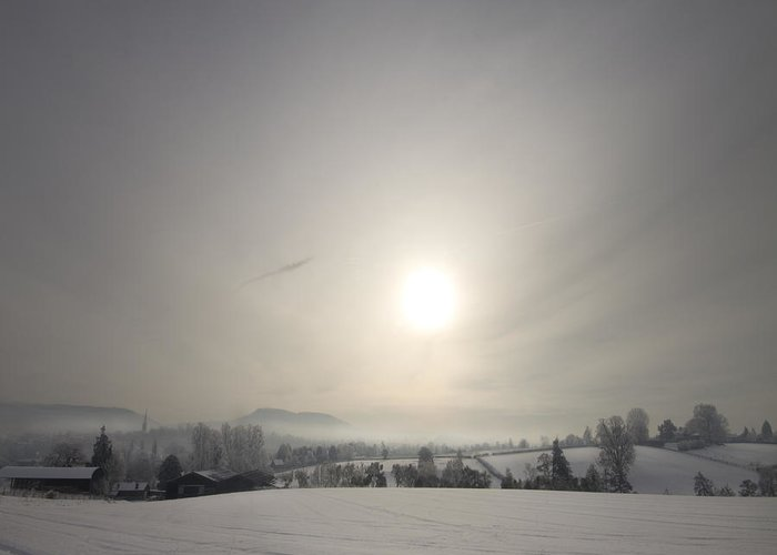 Winter Greeting Card featuring the photograph Frosty Midday by Angel Tarantella