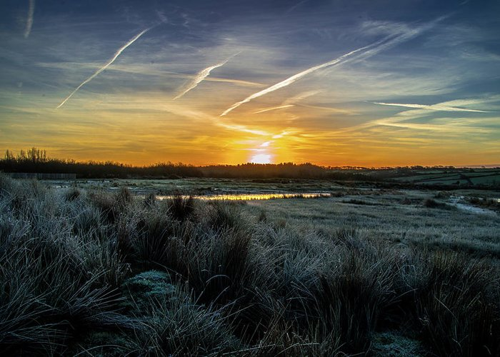 Sunrise Greeting Card featuring the photograph Frosty Sunrise by Stephen Jenkins