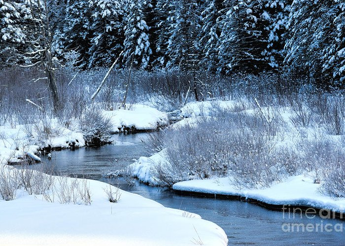 Landscape Greeting Card featuring the photograph Frozen In Time by William Tasker