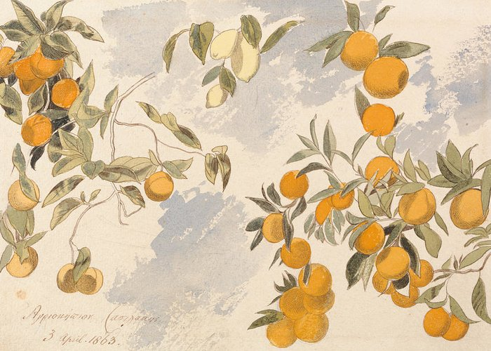 English Art Greeting Card featuring the drawing Fruit Trees, 3 April 1863 by Edward Lear
