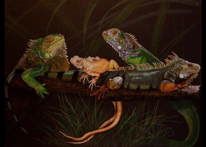 Iguana Greeting Card featuring the drawing Full House by Barbara Keith