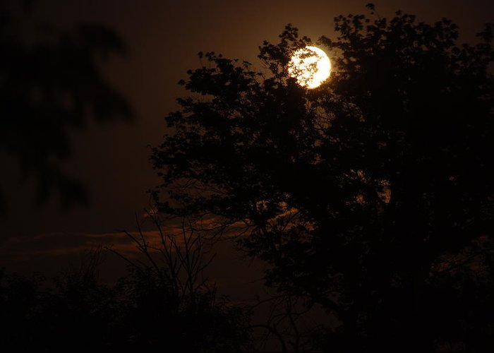 Full Moon Greeting Card featuring the photograph Full Moon 2 by Lisa Gabrius
