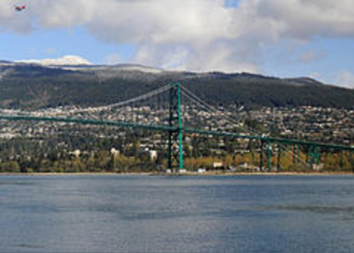 Lion's Gate Bridge Greeting Card featuring the photograph Full View Of The Lion's Gate Bridge Vancouver City by Pierre Leclerc Photography