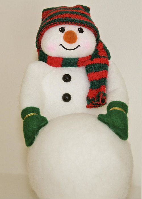 Christmas Cards Greeting Card featuring the greeting card Fuzzy Snowman  Holiday Card 1 by Robert Joseph