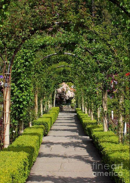 Garden Greeting Card featuring the photograph Garden Arbor Path by Carol Groenen