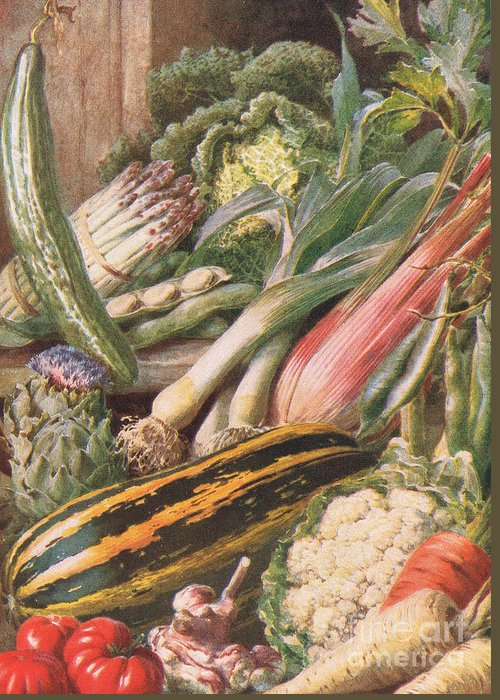 Fresh Produce Drawings Greeting Cards