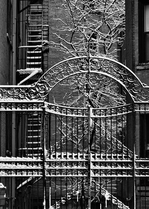 Snow Greeting Card featuring the photograph Gate And Snow by Robert Ullmann