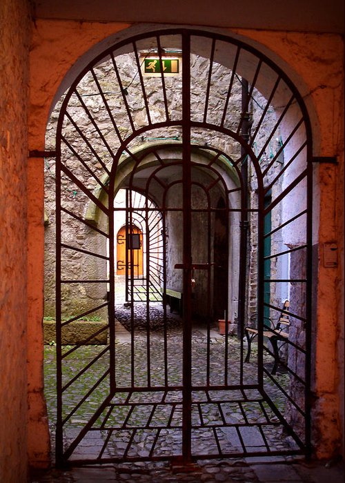 Gate Greeting Card featuring the photograph Gated Passage by Tim Nyberg