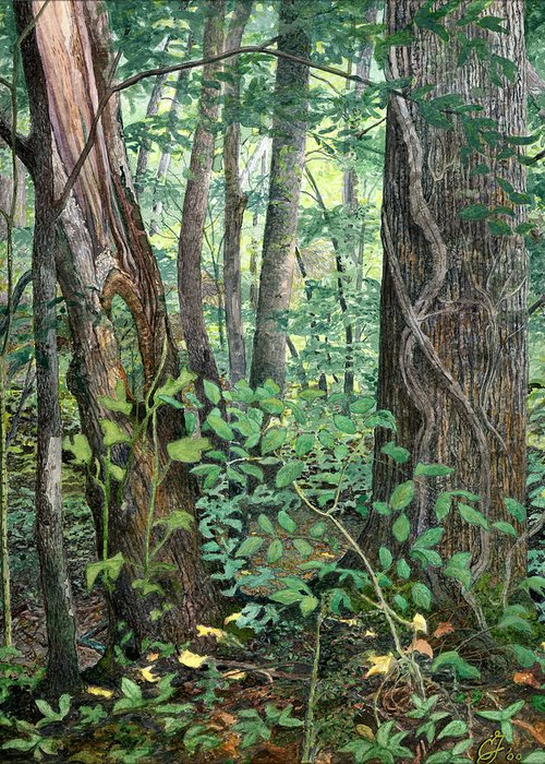 Forest Greeting Card featuring the painting Generations by Craig Gallaway