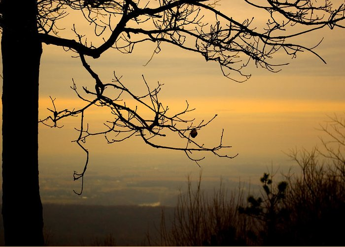 Dusk Greeting Card featuring the photograph Gentle Dusk by Stephen van Vuuren