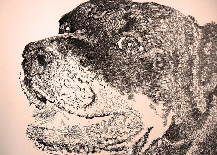 Rottweiler Greeting Card featuring the drawing Gentle Giant by Robbi Musser