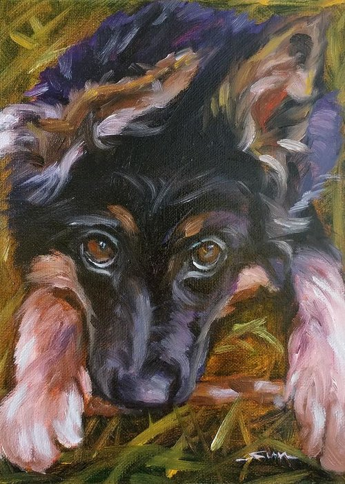 Sun Sohovich Pet Portrait Oil Painting Wall Art