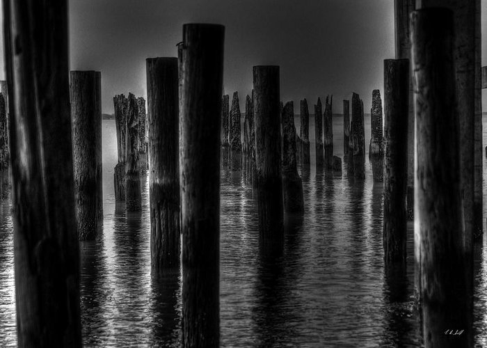 Water Greeting Card featuring the photograph Ghost Pilings by E R Smith