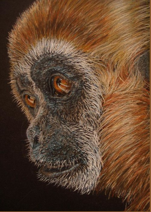 Animals Greeting Card featuring the drawing Gibbon by Karen Ilari
