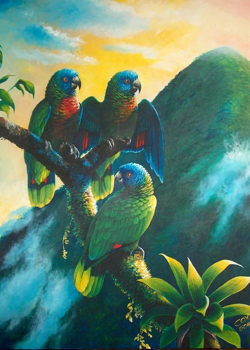 Chris Cox Greeting Card featuring the painting Gimie Dawn 1 - St. Lucia Parrots by Christopher Cox