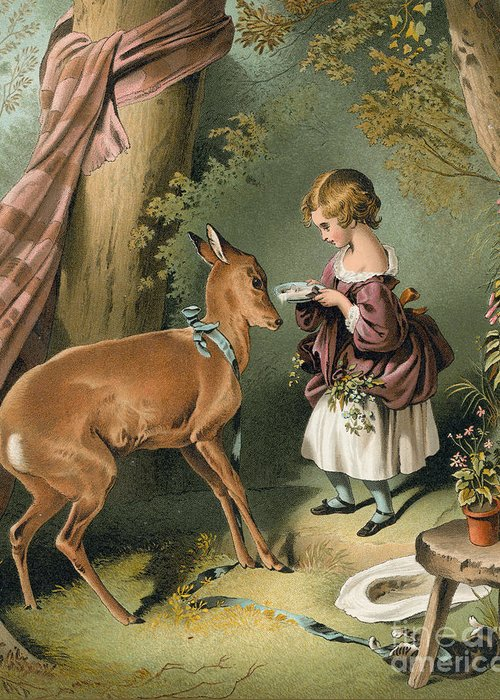 Tree Greeting Card featuring the painting Girl Feeding A Deer by Sir Edwin Landseer