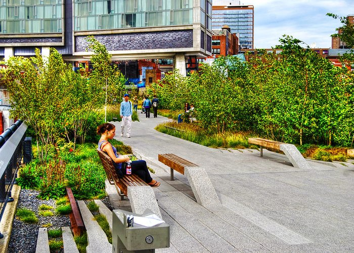 High Line Park Greeting Card featuring the photograph Girl Uninterrupted On The High Line by Randy Aveille