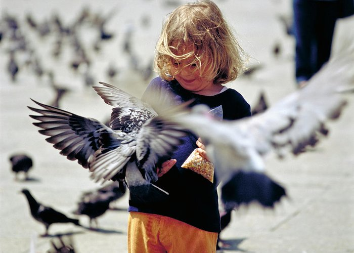 Children Greeting Card featuring the photograph Girl With Pigeons by Heiko Koehrer-Wagner