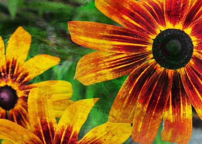 Flower Greeting Card featuring the photograph Gloriosa Daisy by JAMART Photography