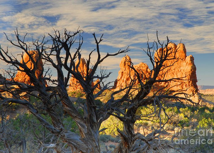 Arches Greeting Card featuring the photograph Glove Rock by Dennis Hammer