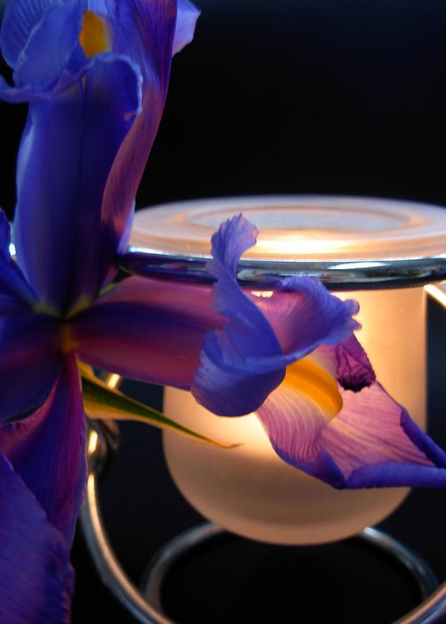 Flowers Greeting Card featuring the photograph Glowing Iris by Amanda Vouglas