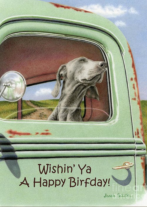 Goin For A Ride Happy Birthday Cards Greeting Card Sale By