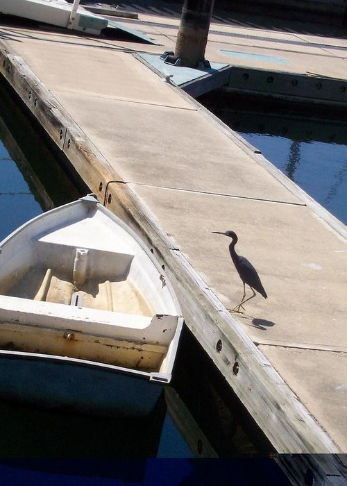 Heron Greeting Card featuring the photograph Going Fishing by James Johnstone