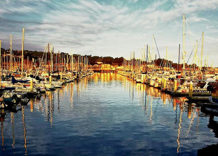 Sunrise Greeting Card featuring the photograph Gold Light, Monterey Marina by Zayne Diamond Photographic