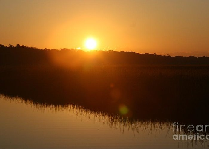 Glow Greeting Card featuring the photograph Gold Morning by Nadine Rippelmeyer