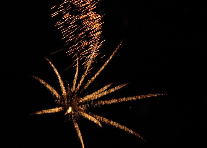 Fireworks Greeting Card featuring the photograph Gold Star Tail by Norman Andrus