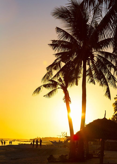 Palm Greeting Card featuring the photograph Golden Beach Tropics by James BO Insogna