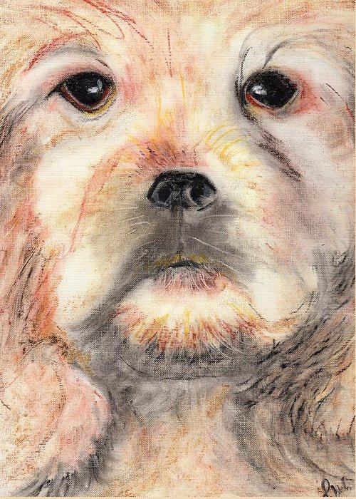 Oil Pastels Greeting Card featuring the painting Golden Cocker by Pamela Wilson