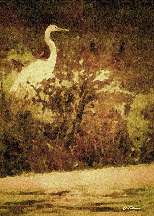 Egret Greeting Card featuring the photograph Golden Pond by Claudia O'Brien