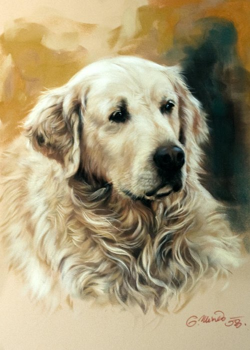 Labrador Greeting Card featuring the drawing Golden Retriever by Gerard Mineo