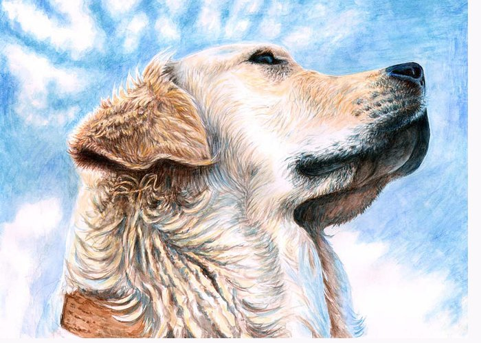 Dog Greeting Card featuring the painting Golden Retriever by Nicole Zeug