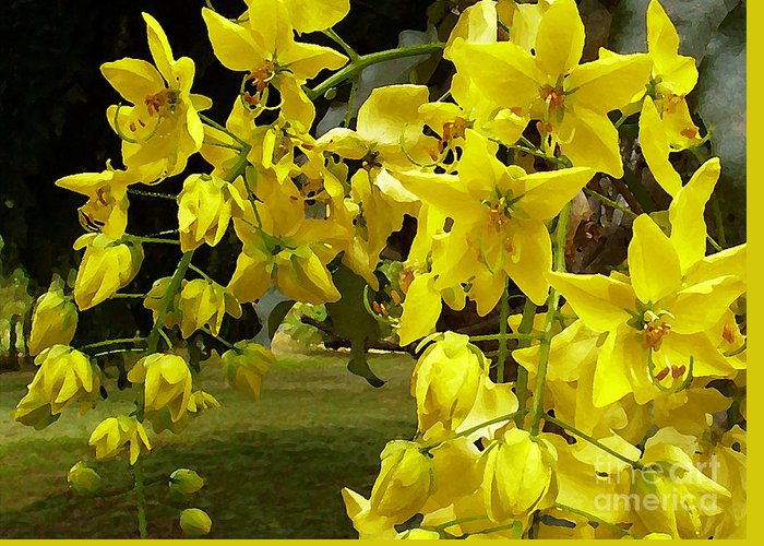 Yellow Shower Tree Greeting Card featuring the photograph Golden Shower Tree by James Temple
