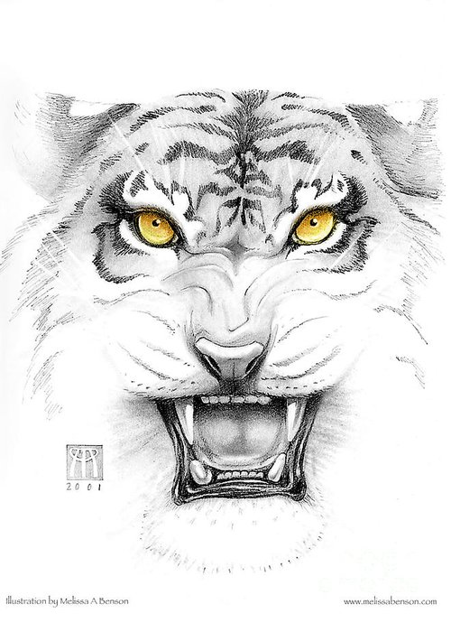 Amber Greeting Card featuring the digital art Golden Tiger Eyes by Melissa A Benson