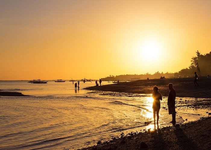 Palm Greeting Card featuring the photograph Golden Tropics Hot Beach Sun by James BO Insogna