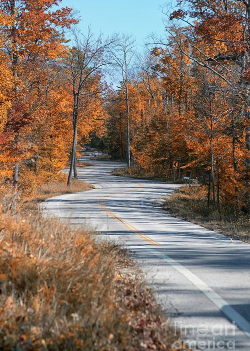 Door County Greeting Card featuring the photograph Golden Winding Road by Ever-Curious Photography
