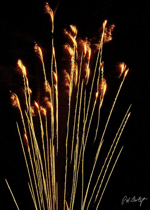 July 4th Greeting Card featuring the photograph Goldenrod by Phill Doherty