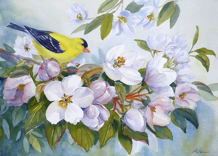Bird Greeting Card featuring the painting Goldfinch And Crabapple Blossoms by Janet Zeh