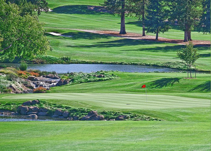 Golf Greeting Card featuring the photograph Golf Course by Liz Santie