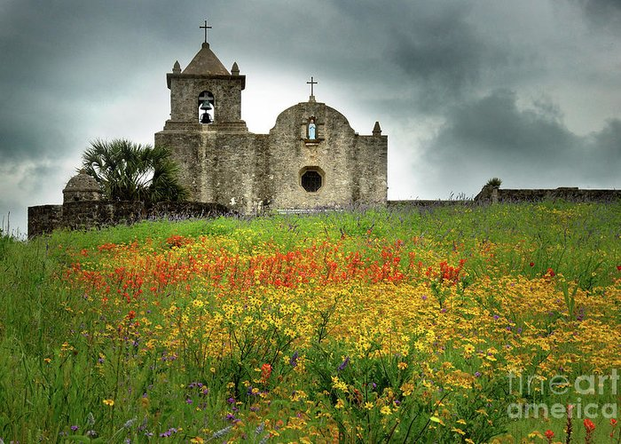 Landscape Greeting Card featuring the photograph Goliad In Spring by Jon Holiday