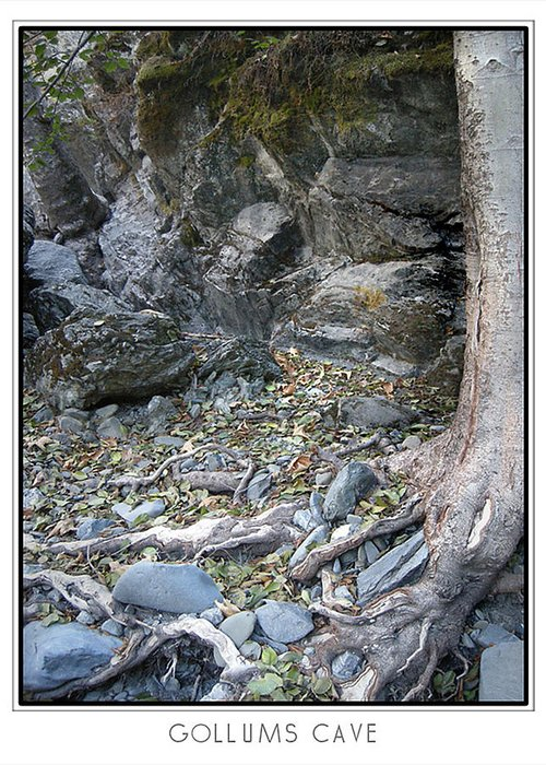 Trees Greeting Card featuring the photograph Gollum's Cave by Karen W Meyer
