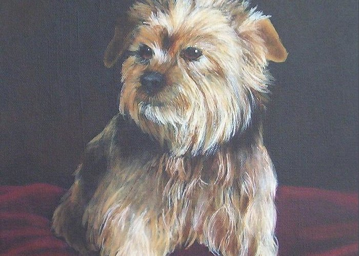 Pet Portrait Greeting Card featuring the painting Gonzo by Janice M Booth