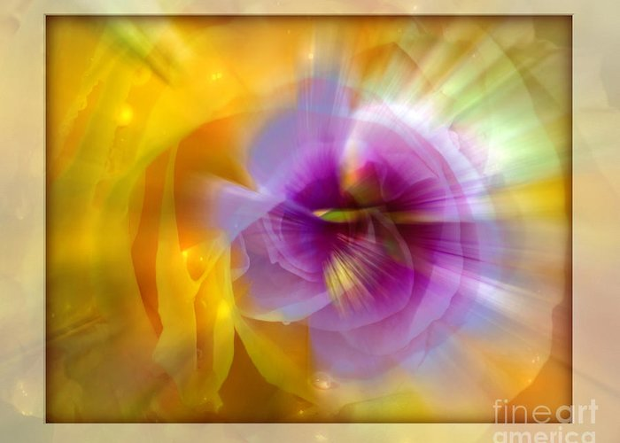 Flower Greeting Card featuring the photograph Good Morning Sunshine by Chuck Brittenham