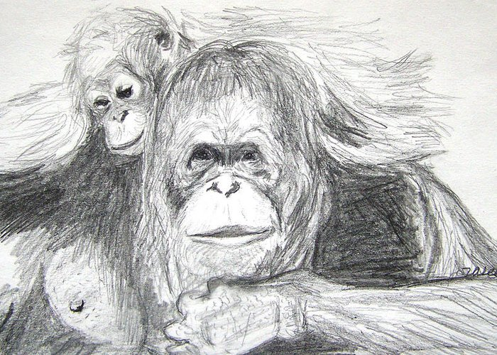 Wildlife Greeting Card featuring the drawing Gorillas by Vallee Johnson