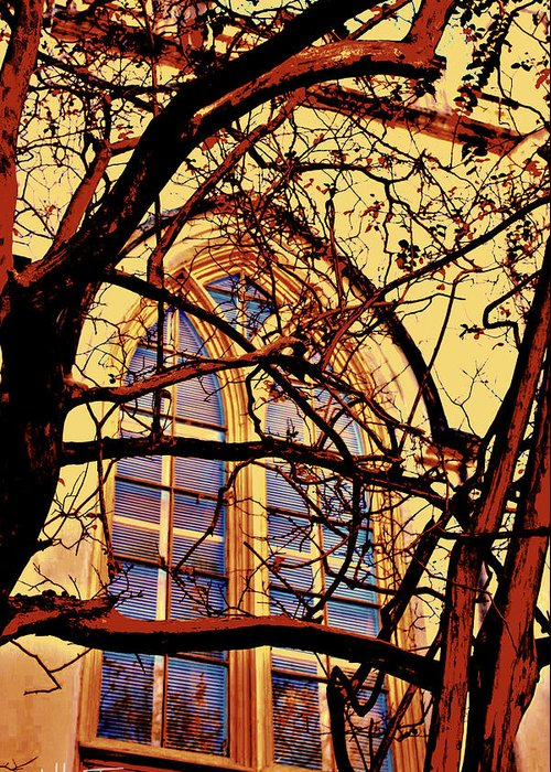 Window Greeting Card featuring the photograph Gothic Window by Jill Tennison