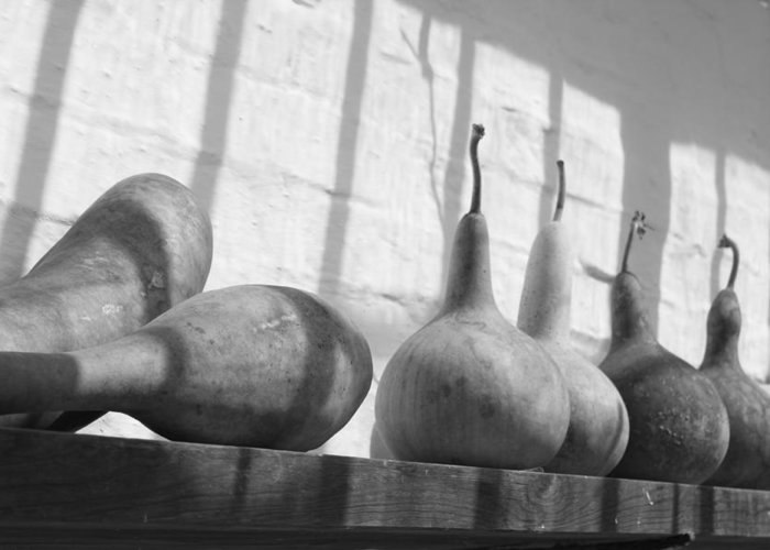 Gourds Greeting Card featuring the photograph Gourds On A Shelf by Lauri Novak